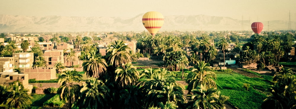 yellow and red hot air balloons during daytime