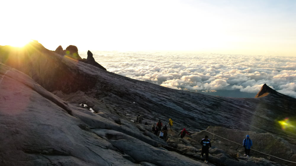 landscape photo of people standing on mountain