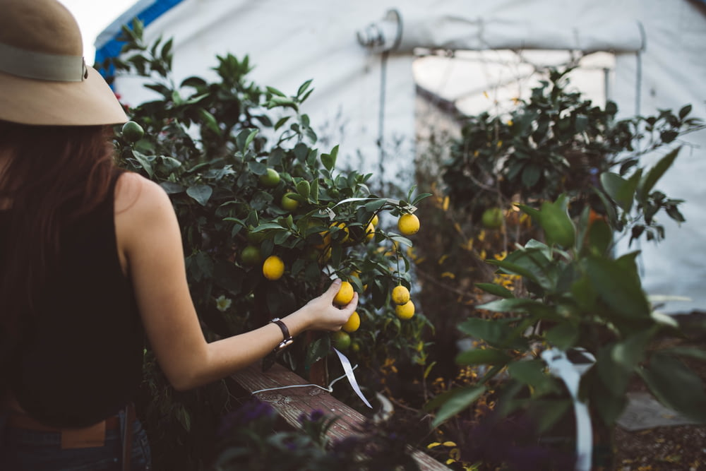 woman in black top holding yellow fruit