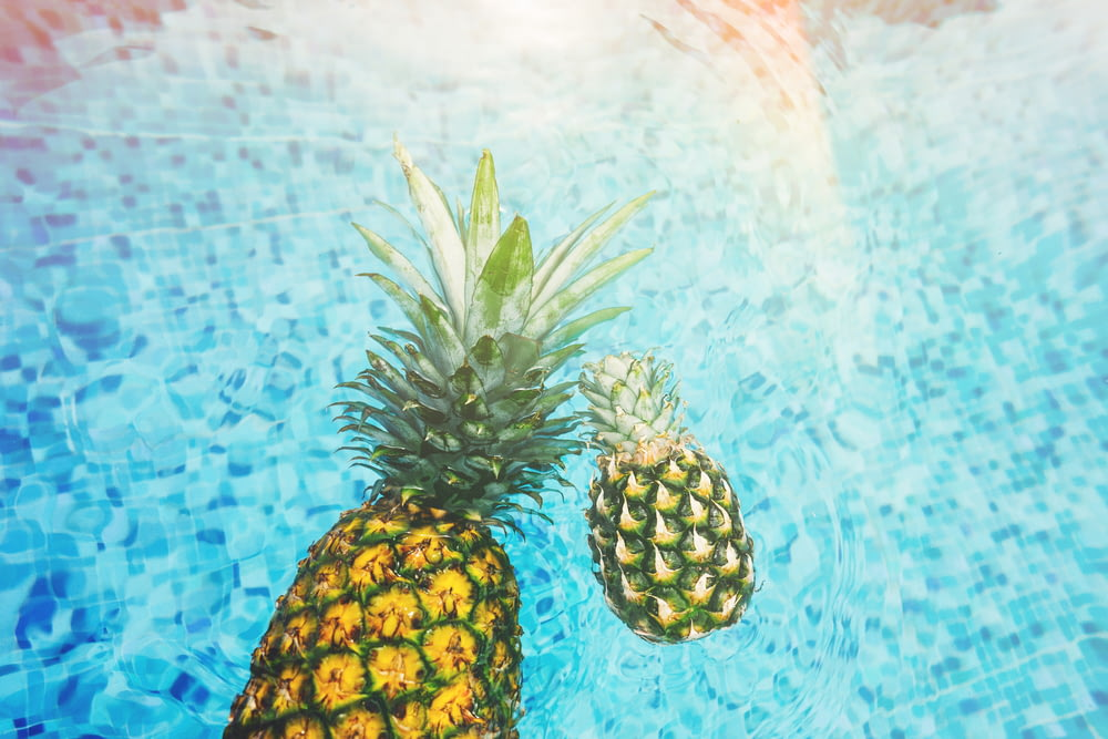 two pineapples on body of water
