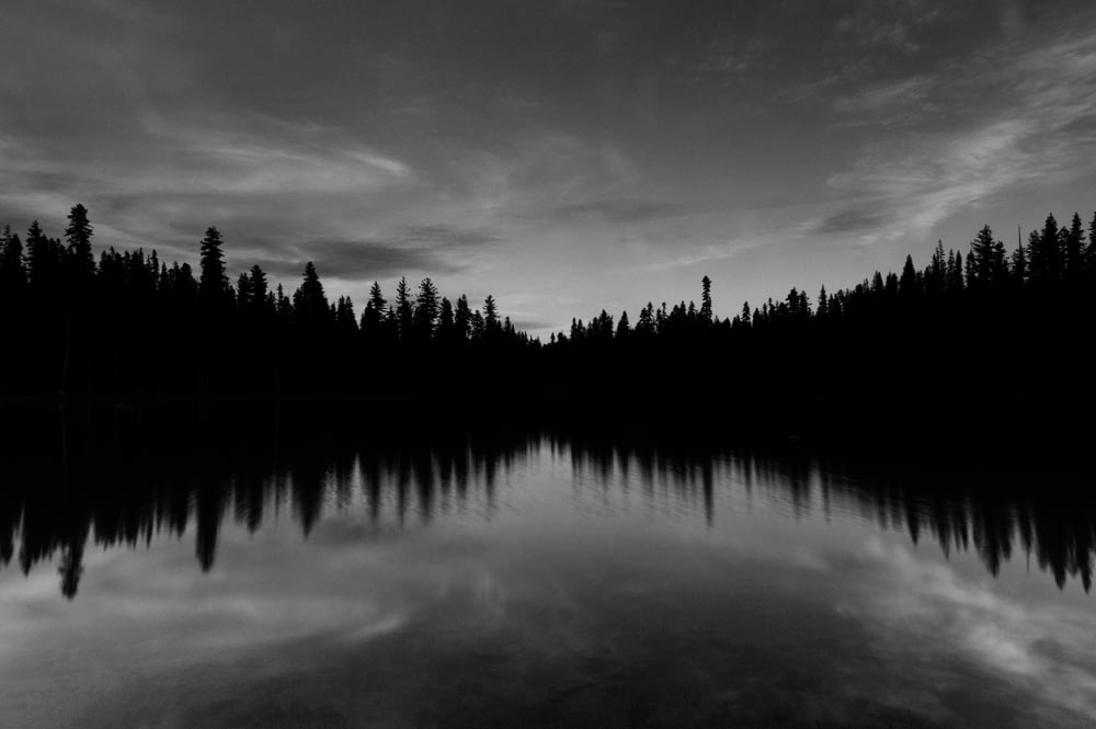 body of water near trees under cloudy sky