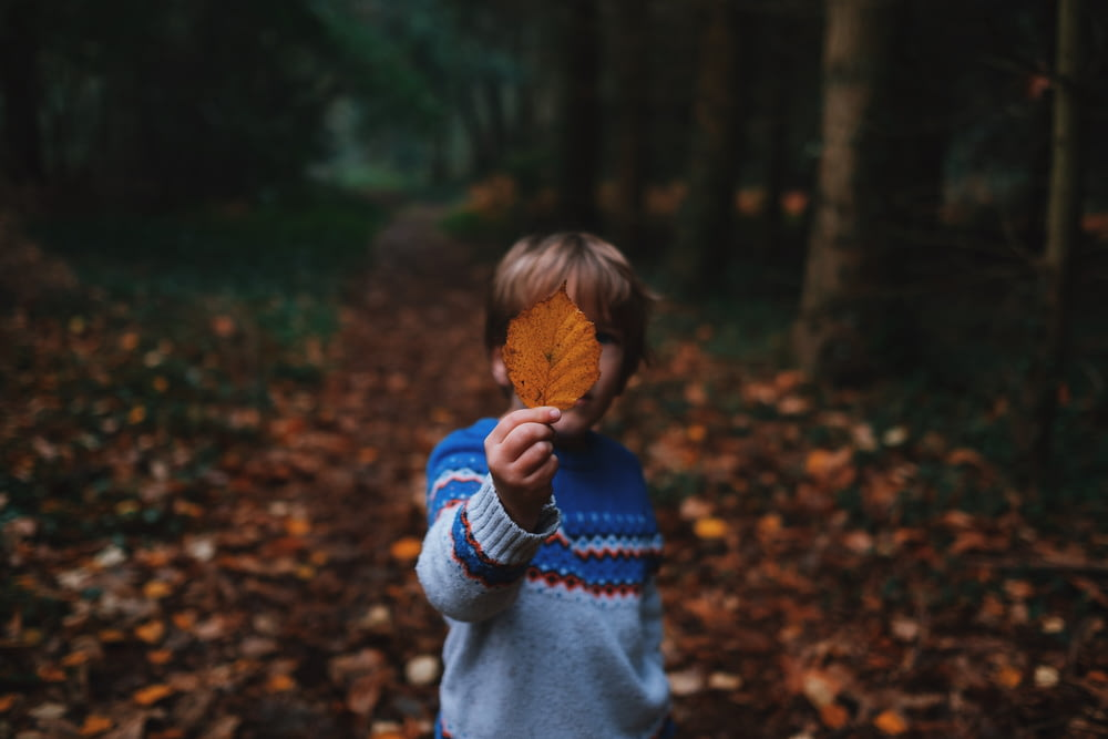 boy holding brown leaf covering his face