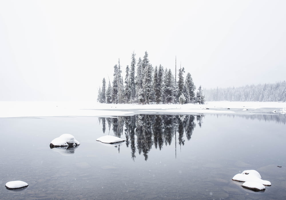 snowfield and body of water