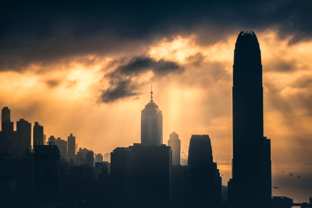 silhouette photography of high-rise buildings during golden hour