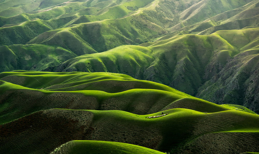 bird's eye view photograph of green mountains