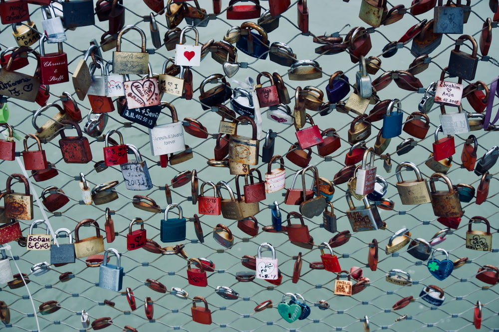 assorted-color padlock lot on hog wire fence