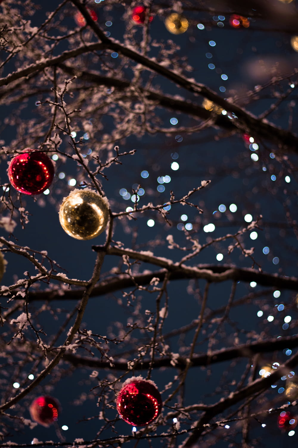 selective focus photography of baubles