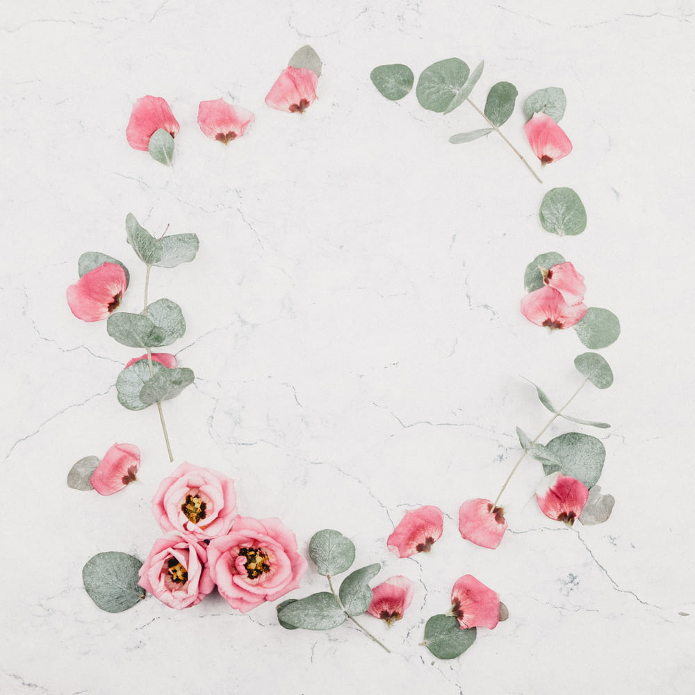pink roses on white marble surface