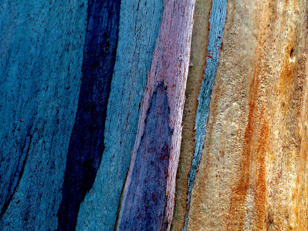 blue and brown painted surface