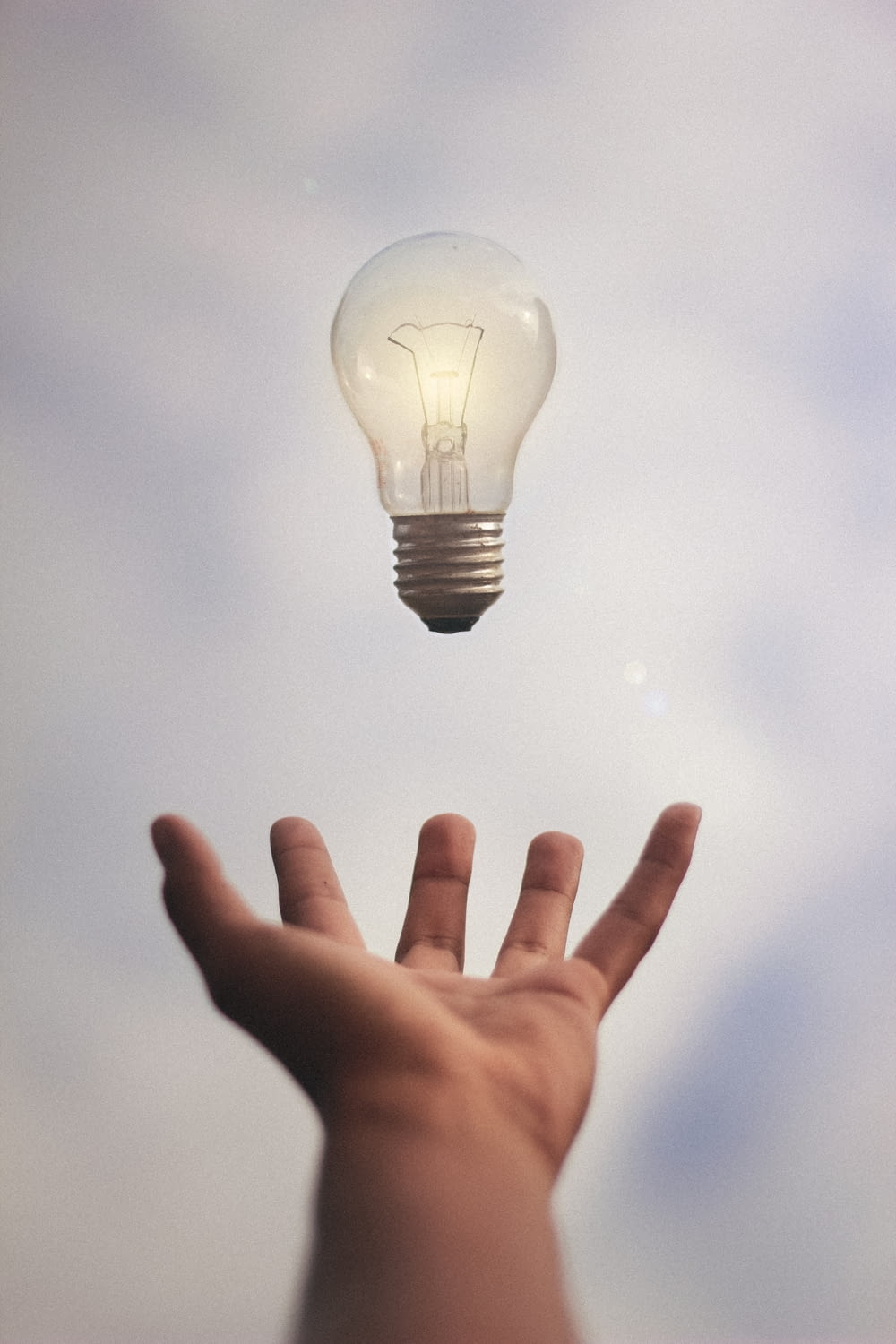 person catching light bulb