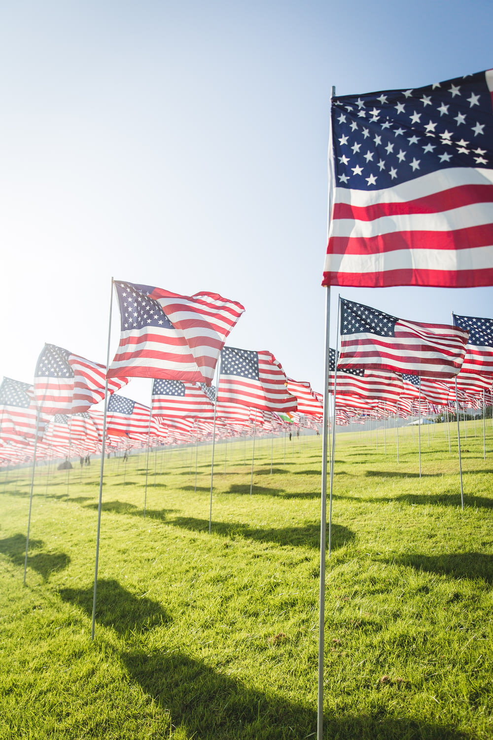 flag of America lot on grass field