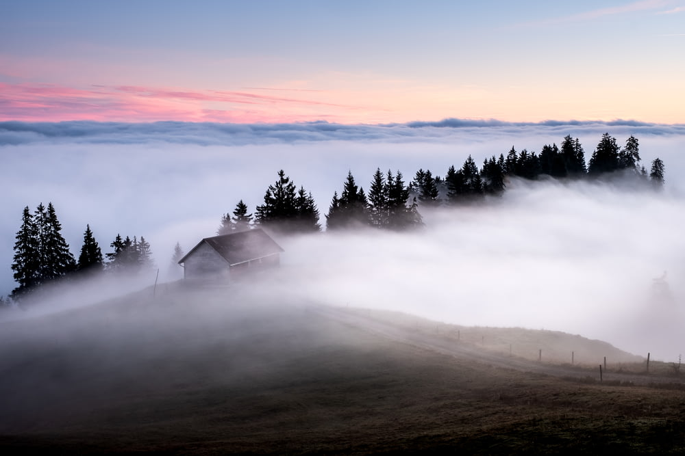 white and brown wooden house surrounded by fogs