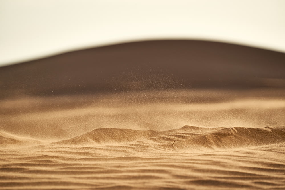 brown sand in closeup photography