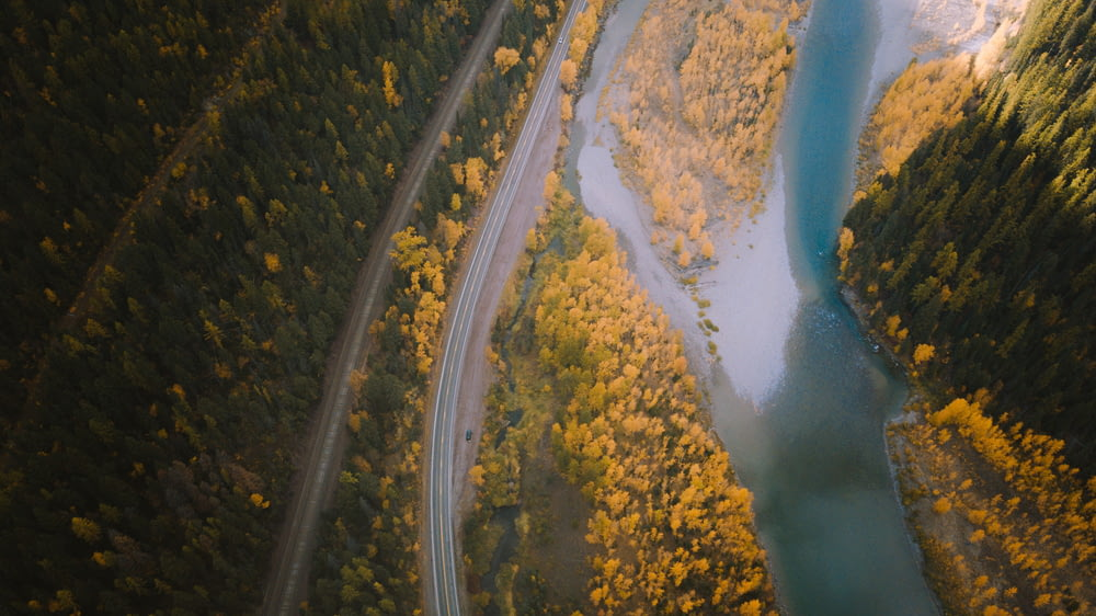 aerial photography of farm road beside river