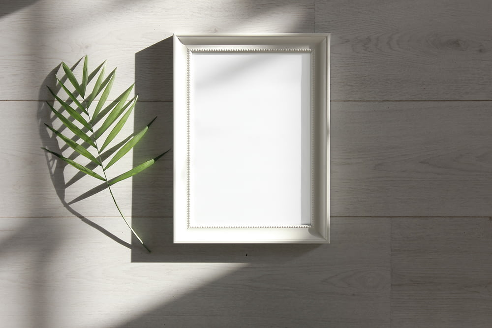 green-leafed beside white photo frame