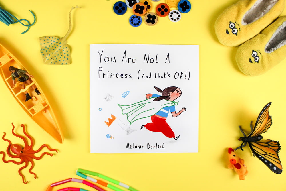 You are not a Princess and that's ok book