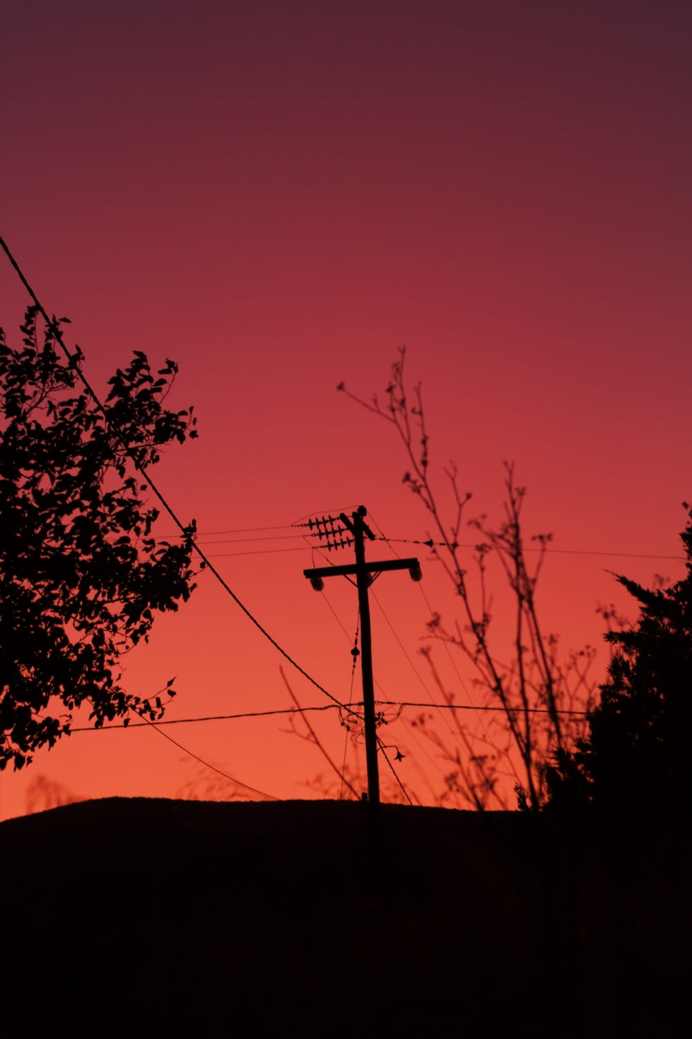 silhouette of utility pole and trees
