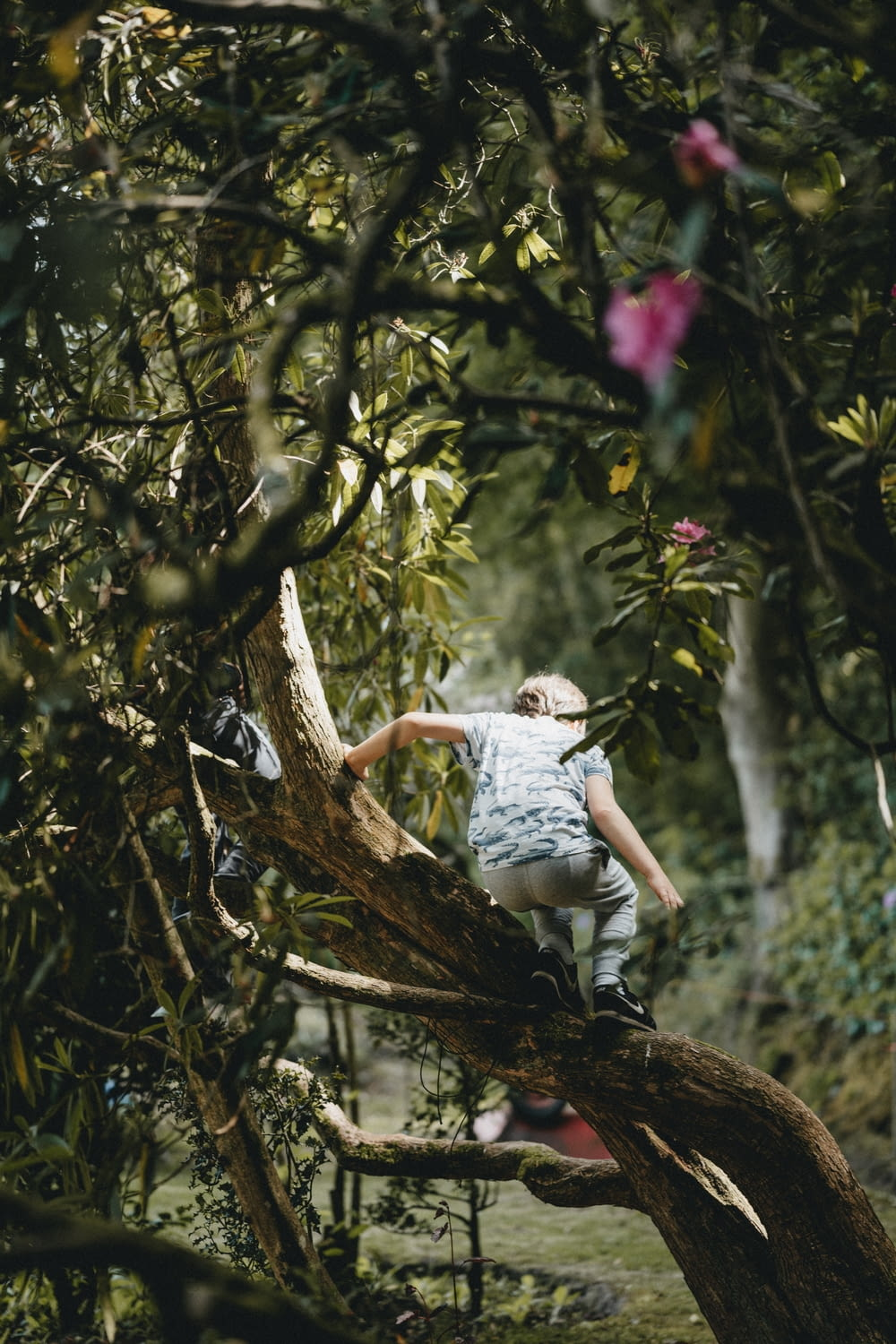 woman in white shirt sitting on tree branch