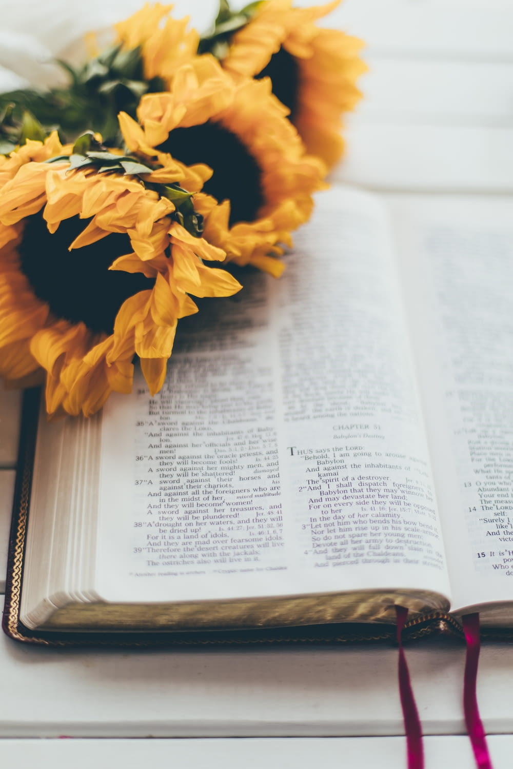 yellow flower on book page