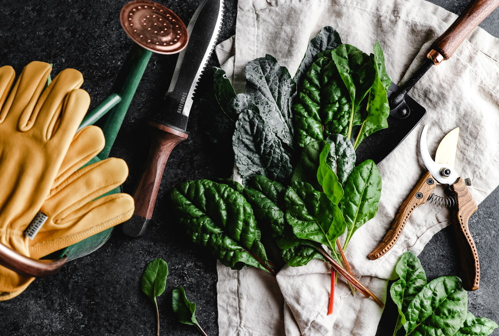 green leaves beside brown wooden rolling pin