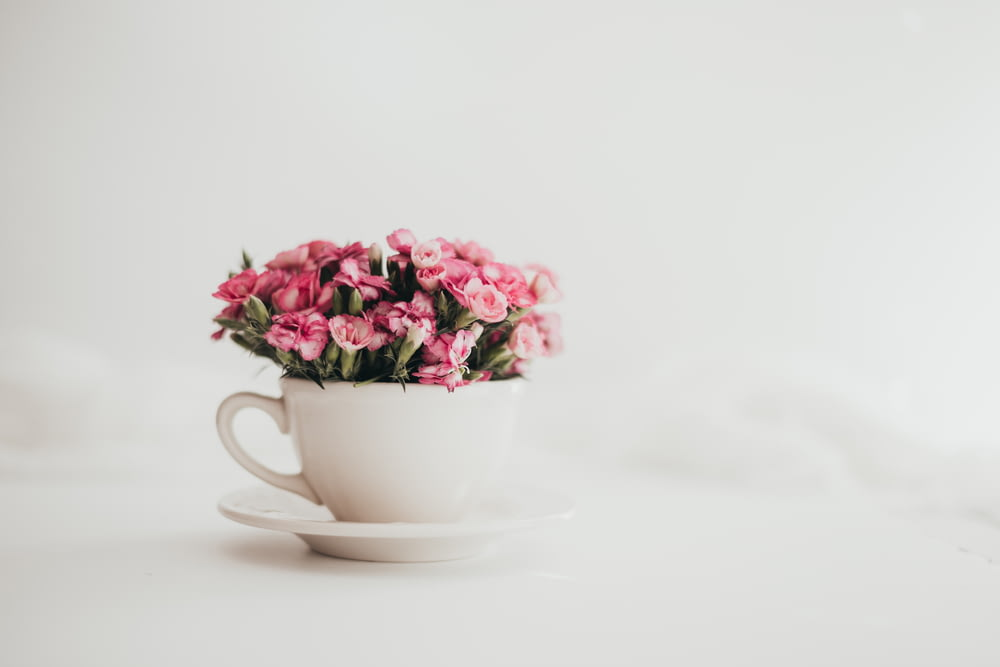pink flowers in white ceramic teacup