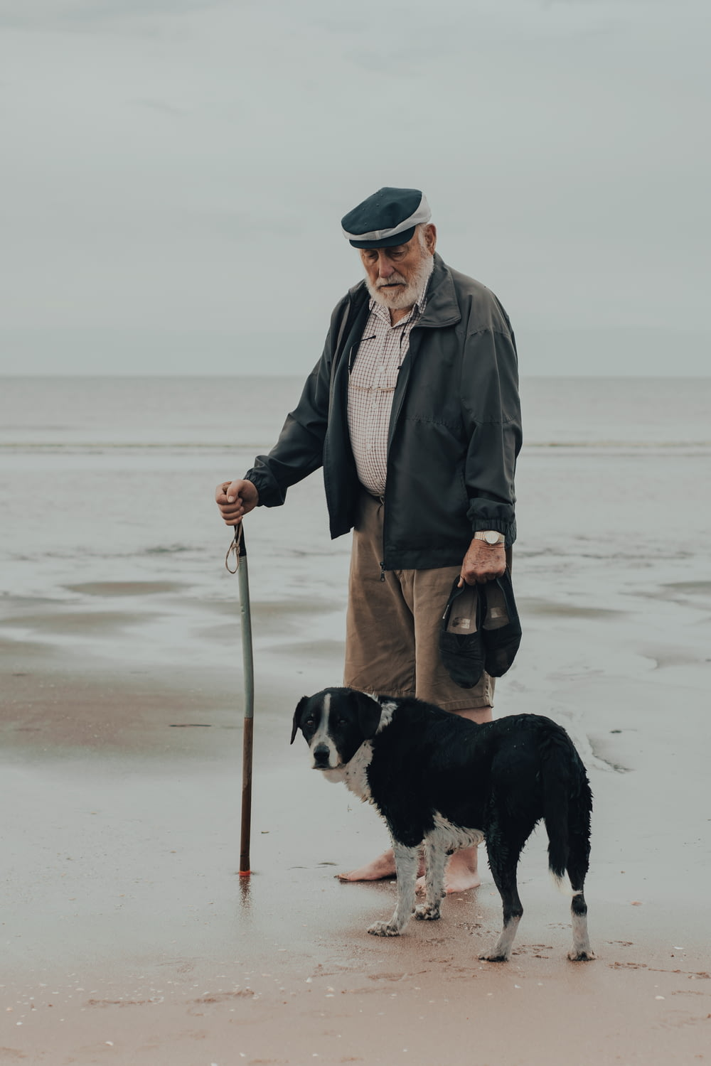 man in gray coat holding black and white short coat dog on beach during daytime