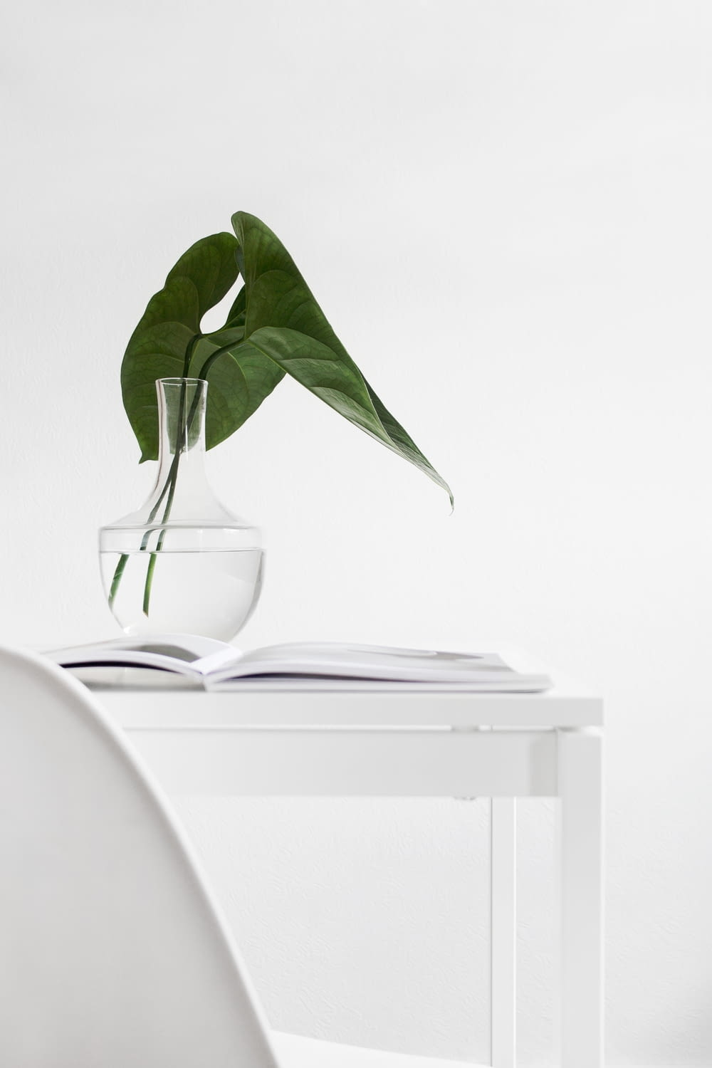 green plant on clear glass vase on white wooden table